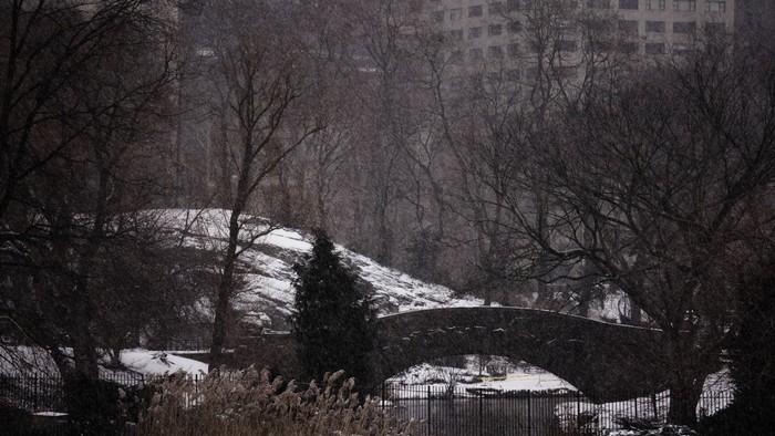New York City - Tiff Chea