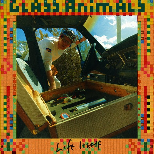 """Life Itself"" - Glass Animals"